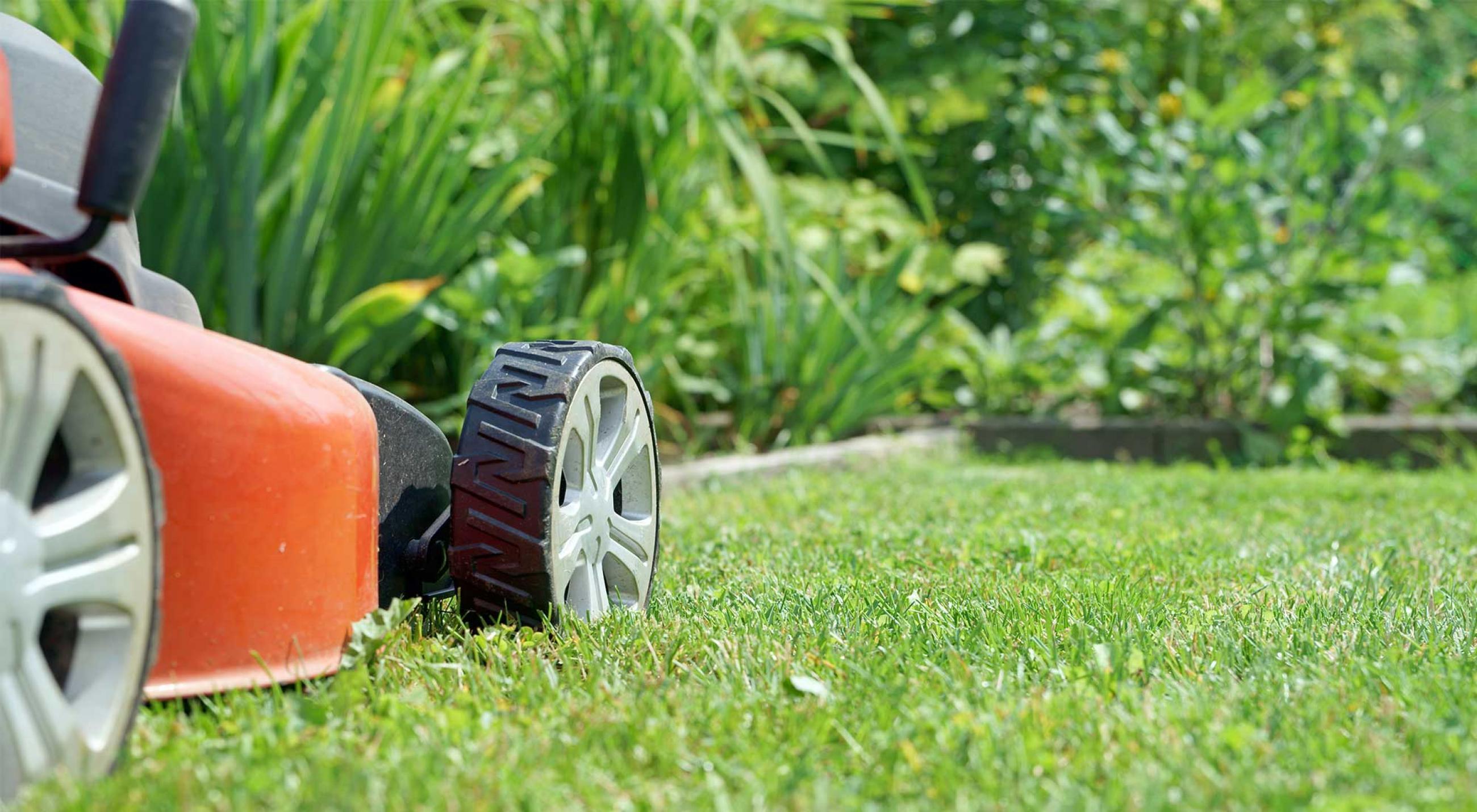 entretien jardin defiscalisation